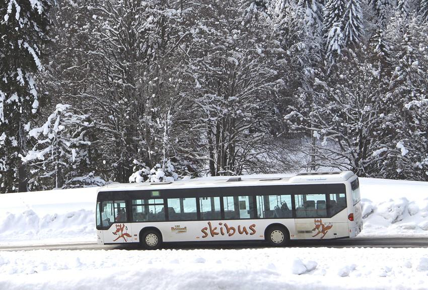 Accès en skibus